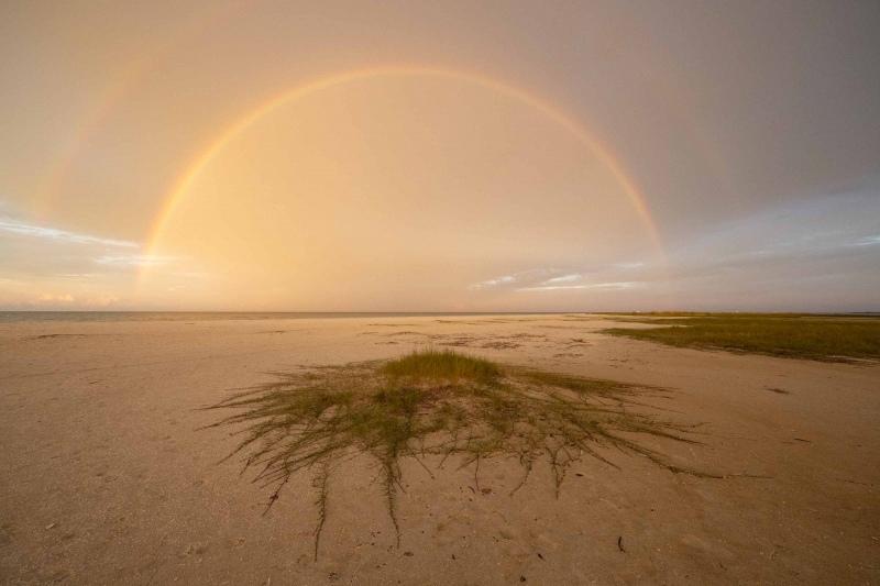 raiinbow-ORIG-_A1B4951-Fort-DeSoto-Park-FL