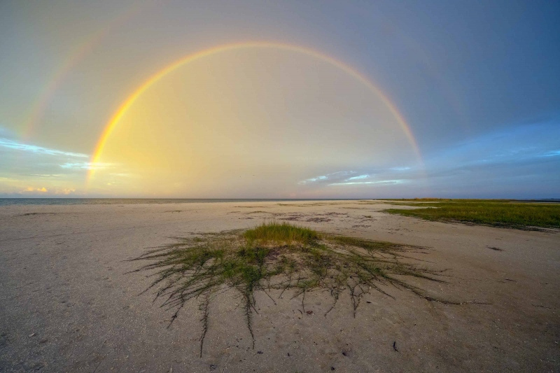 sand-mat-rainbow-3200_A1B4951-Fort-DeSoto-Park-FL